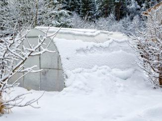 Gewächshaus unter Schnee