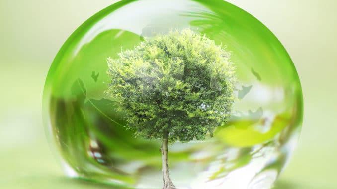 Baum im Wassertropfen - Umweltschutz